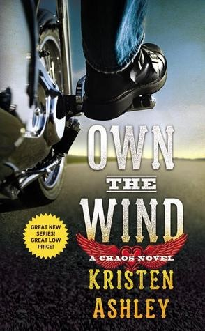 Joint Review: Own the Wind by Kristen Ashley