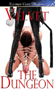 #DFRAT Excerpt and Giveaway: The Dungeon by Velvet