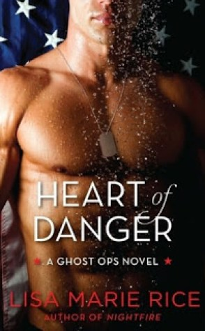 Review: Heart of Danger by Lisa Marie Rice