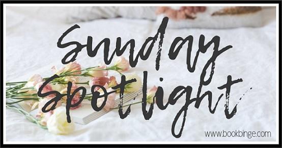 Sunday Spotlight: Meet Cute by Helena Hunting