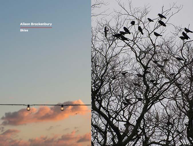 Review | Skies, Alison Brackenbury | Book of the Week