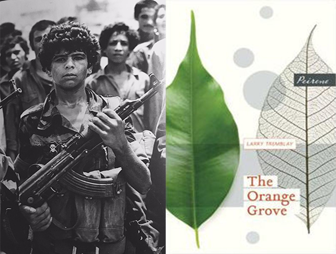 Review | Larry Tremblay, The Orange Grove | Peirene Press
