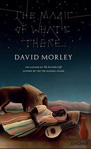 david morley carcanet bookblast