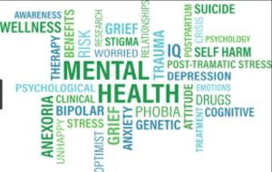 mental health terminology