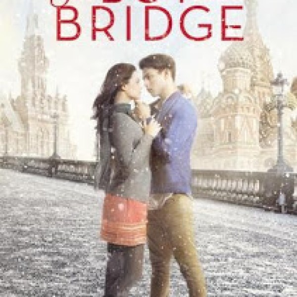 Review: The Boy on the Bridge by Natalie Standiford