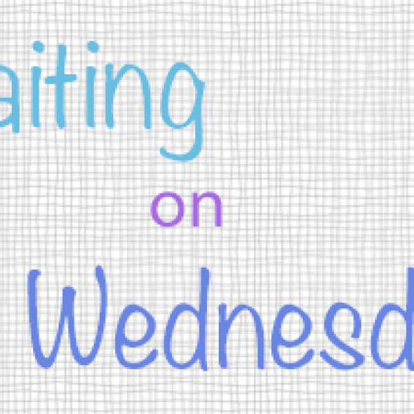 Waiting on Wednesday: Because You'll Never Meet Me by Leah Thomas