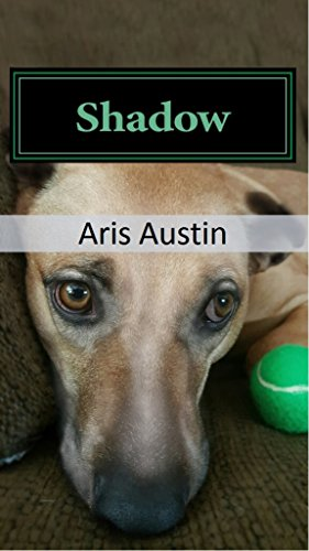 Book Cover: Shadow by Aris Austin