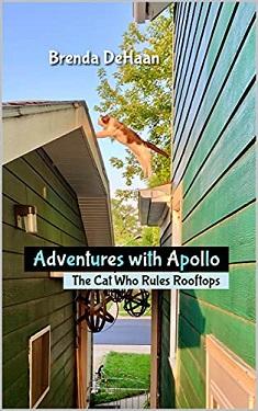 Adventures with Apollo by Brenda DeHaan