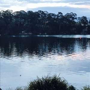 Shoalhaven River at dusk