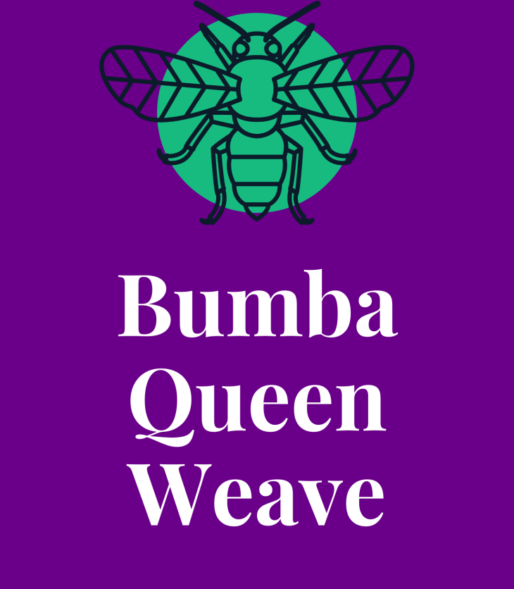 Bumba Queen Weave ebook cover