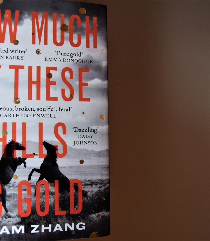 How Much of These Hills Is Gold hardback book cover