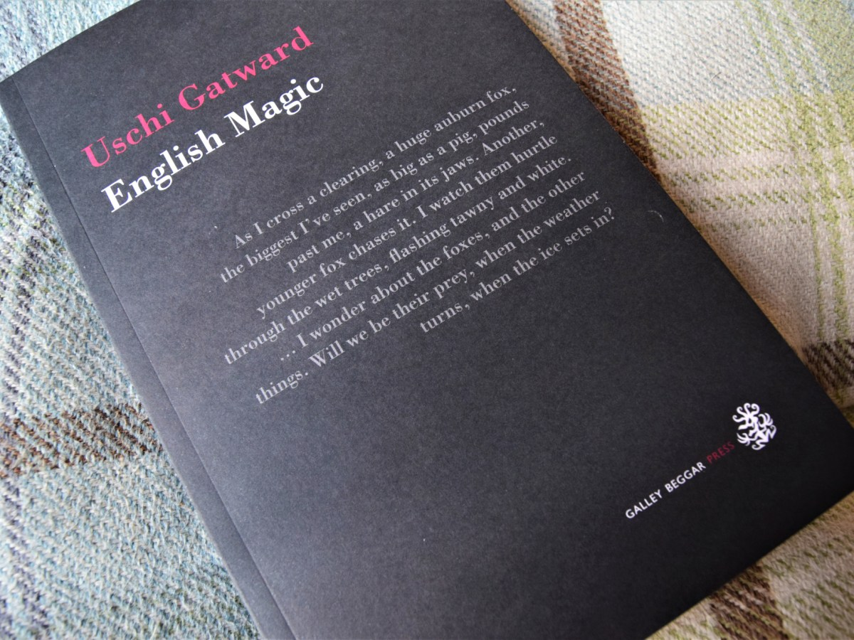 English Magic paperback book cover