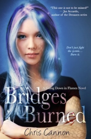 {Review+Giveaway} Bridges Burned by Chris Cannon @entangledteen @ccannonauthor