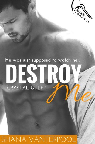 {Review+Giveaway} Destroy Me by Shana Vanterpool @shanavauthor @swoonromance