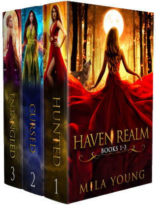 Haven Realm Box Set
