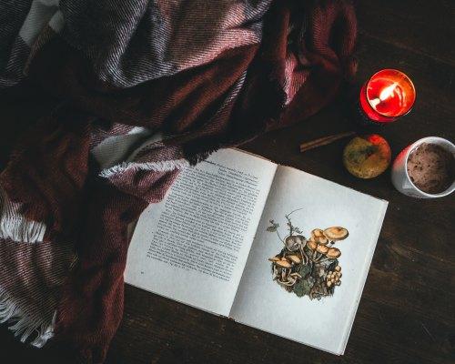 Cu și despre bijuterii literare: Am/N-am cu cărți