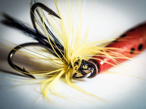 hook_fish