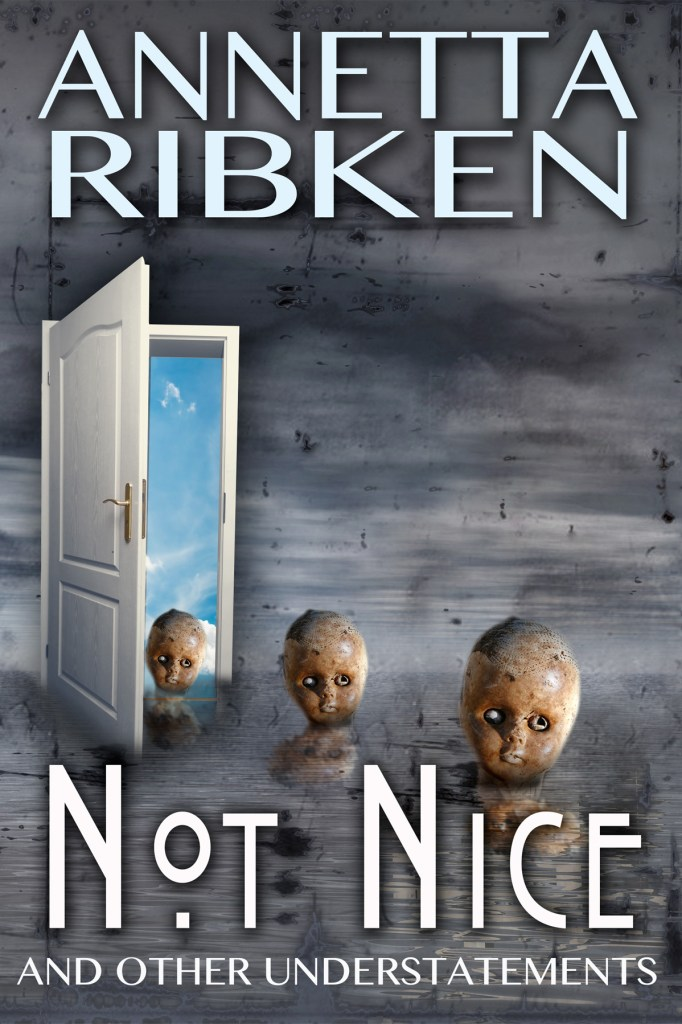 Not Nice, by Annetta Ribken, cover by Book Cover Corner