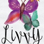 Release Day Blitz & Giveaway: Livvy by Lori L. Otto