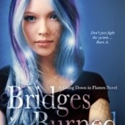 Blog Tour, Review & Giveaway: Bridges Burned by Chris Cannon