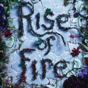 Books On Our Radar: Rise of Fire (Reign of Shadows #2) by Sophie Jordan