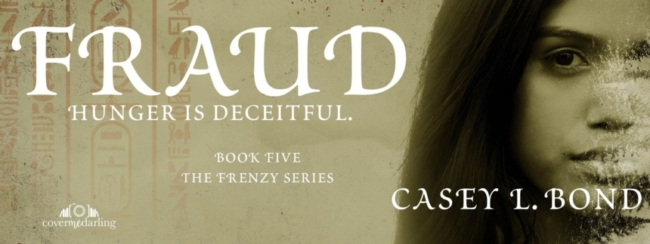 fraud-fb-banner