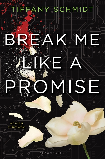 Book Rewind · Review: Break Me Like a Promise by Tiffany Schmidt
