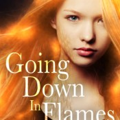 Sales Blitz: Going Down in Flames by Chris Cannon