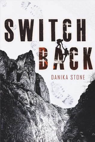Books On Our Radar: Switchback by Danika Stone