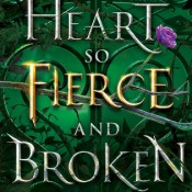 Cover Crush: A Heart So Fierce and Broken by Brigid Kemmerer