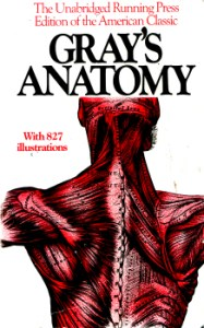 Gray's Anatomy by Henry Gray, F.R.S. 4