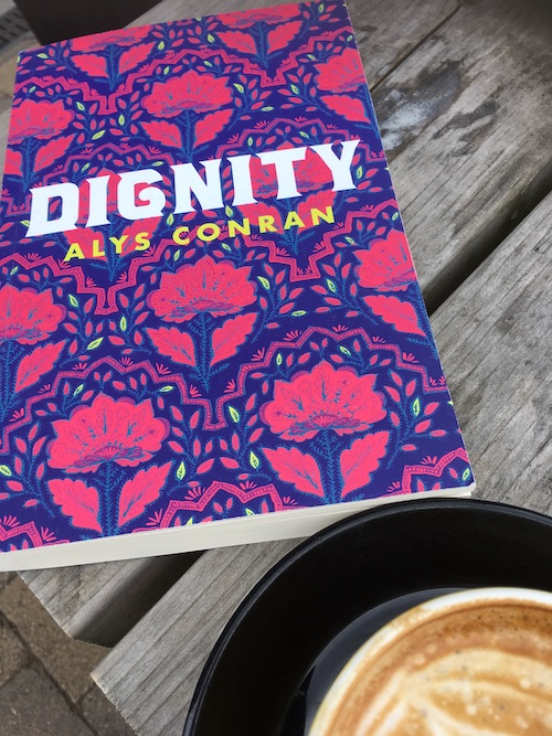 Cover image of Dignity, a  novel by Alys Conran the Welsh author