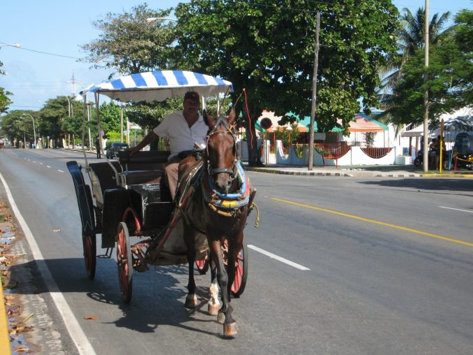 Horse and buggy rides in Varardero, Cuba