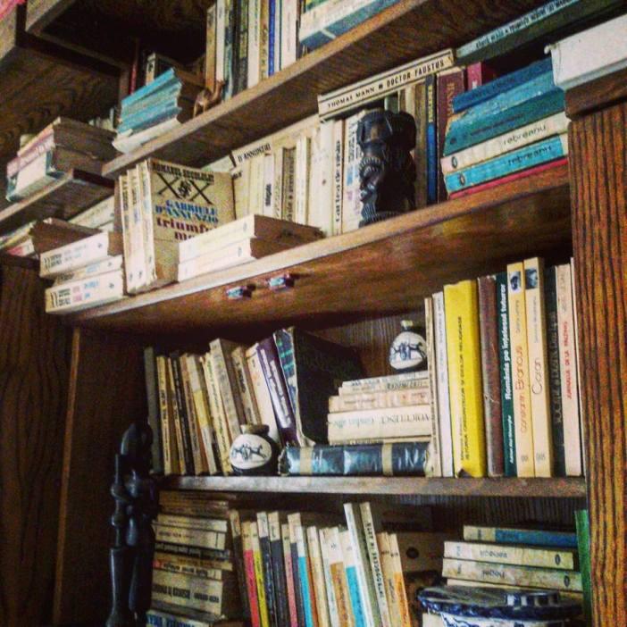 O parte din biblioteca de carti de la Piatra-Neamt