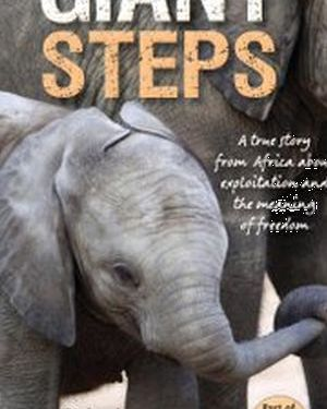 Giant Steps - A true story from Africa about exploitation and the meaning of freedom