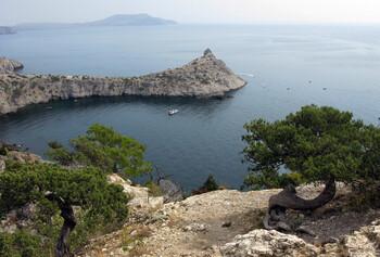 Крым откроет отели и санатории для местных жителей 15 июня