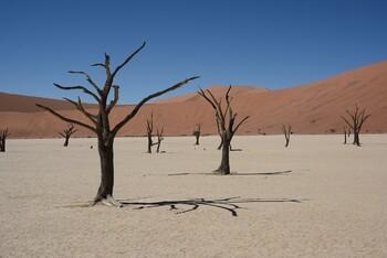 Намибия открыла границы для иностранных туристов