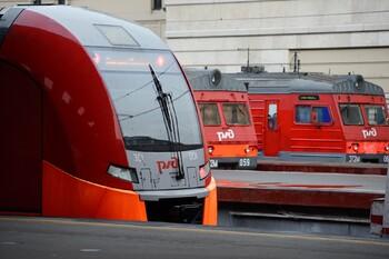 Пассажиров поездов при покупке билетов обяжут указывать контактную информацию