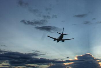 РФ и Узбекистан обсуждают создание совместного авиалоукостера