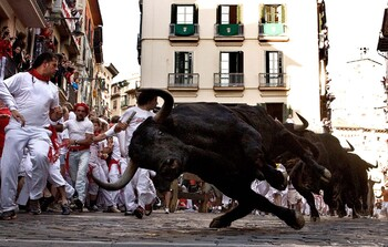 В Испании отменён забег с быками Сан-Фермин