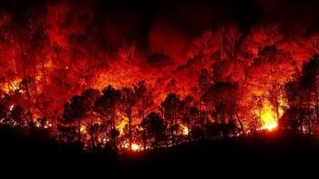 Свыше 160 лесных пожаров продолжают действовать в Якутии