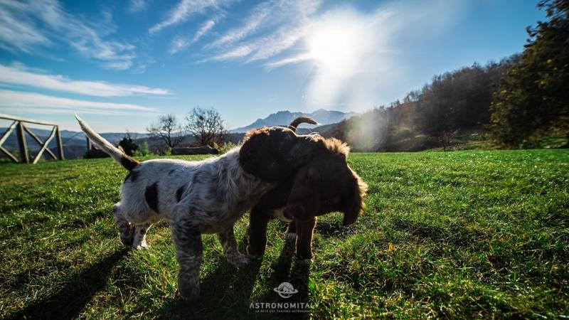 Agriturismo Lo Scoiattolo in Abruzzo sul Gran Sasso – I cieli più belli d'Italia (16)