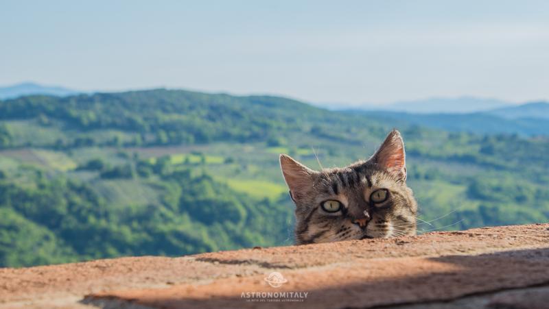Poggio alla Rocca (Grosseto, Val d'Orcia – Toscana) – I cieli più belli d'Italia GOLD (20)