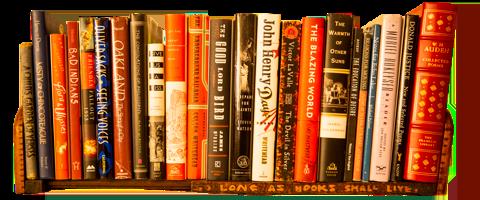 Sunny's bookshelf