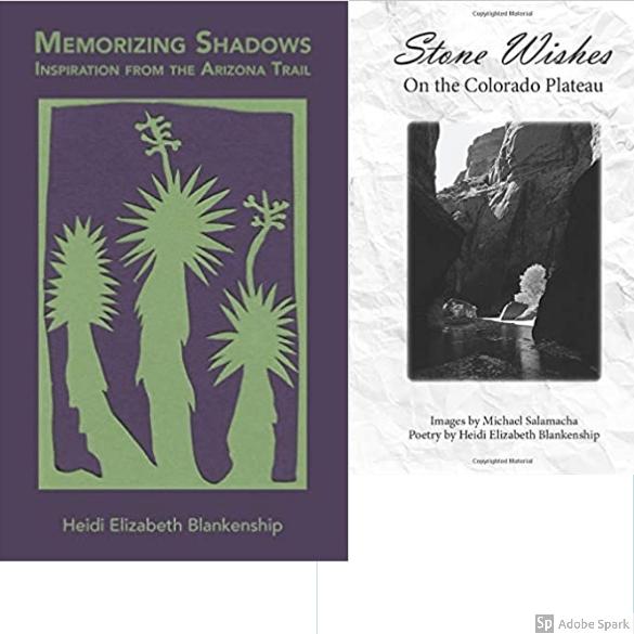 Memorizing Shadows - Stone Wishes