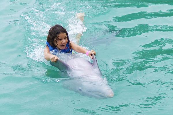 Dunn's River Falls & Dolphin Encounter   Book Jamaica Excursions   bookjamaicaexcursions.com   Karandas Tours