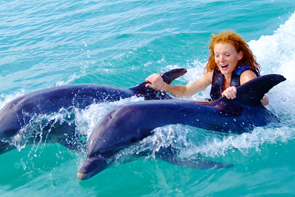Dolphin Encounter Program from Negril | Book Jamaica Excursions | bookjamaicaexcursions.com | Karandas Tours