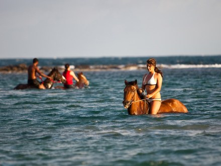 Beach Horseback Ride & Swim Adventure| Book Jamaica Excursions | bookjamaicaexcursions.com | Karandas Tours