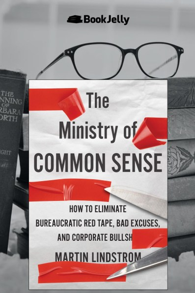 The Ministry of Common Sense book review