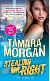 Stealing Mr. Right (Penelope Blue) - Tamara Morgan